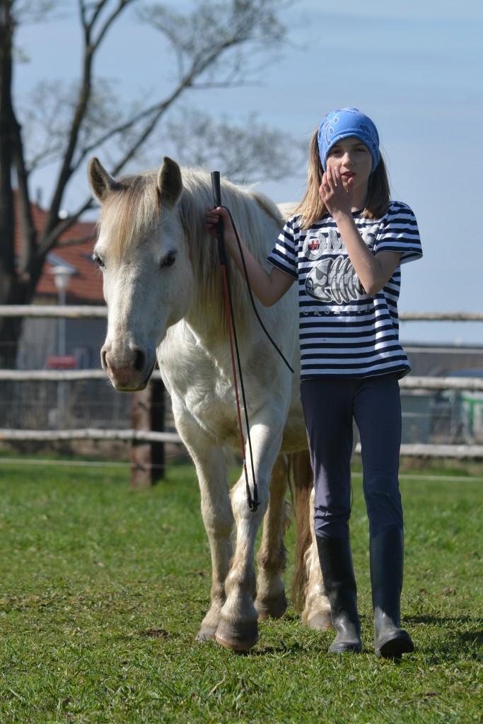 Aktivity svyužitím koní, Vladykův Dvůr